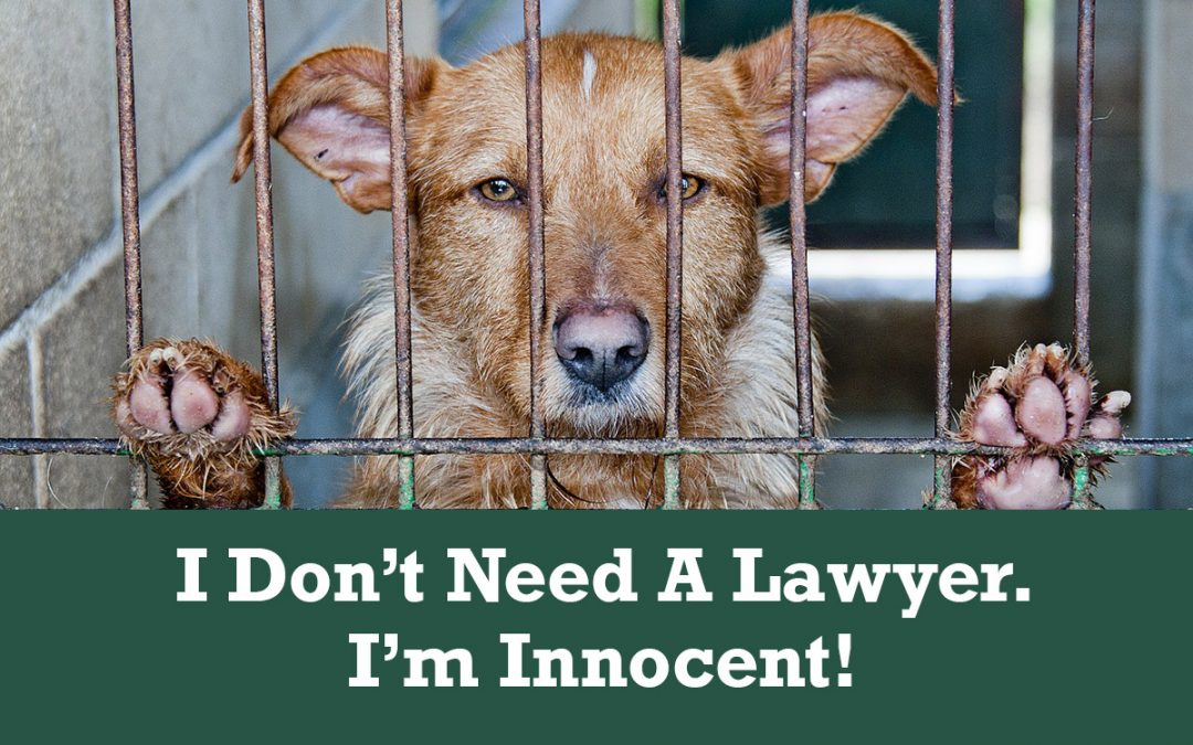 Do I Need A Lawyer If I'm Innocent?