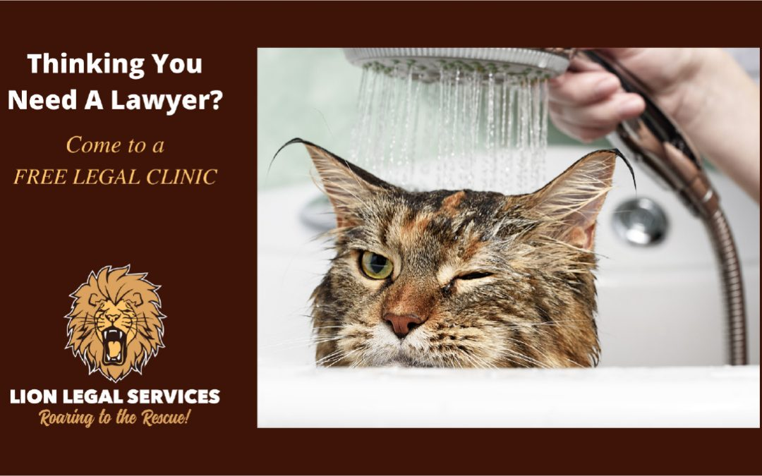 Thinking You Need A Lawyer?